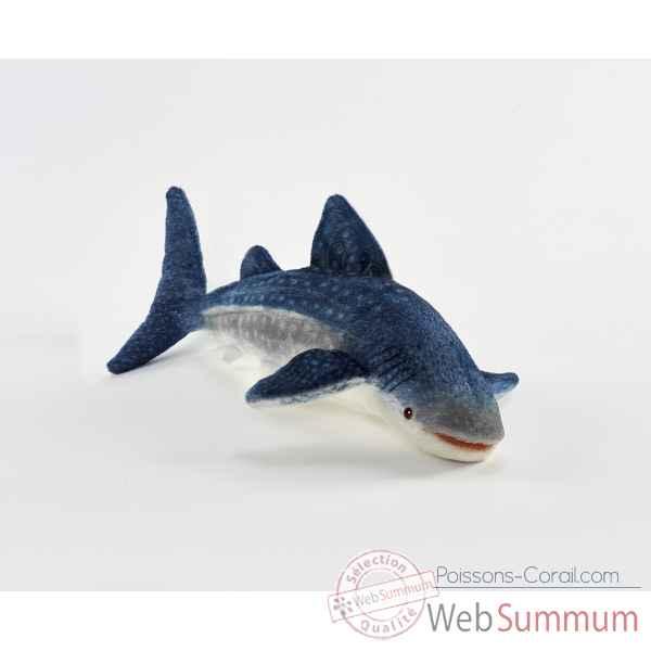 Achat de balaine sur poissons corail for Poisson achat