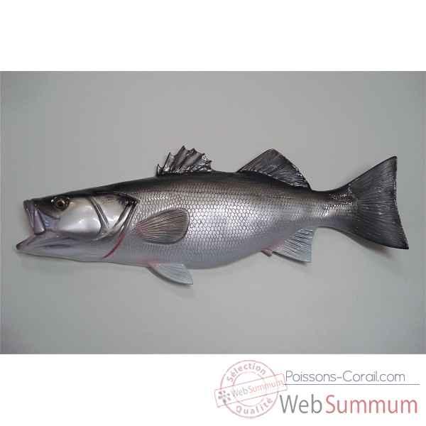 Achat de murale sur poissons corail for Achat poisson