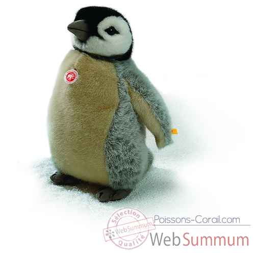 Video Peluche Steiff Bebe pingouin studio-504976