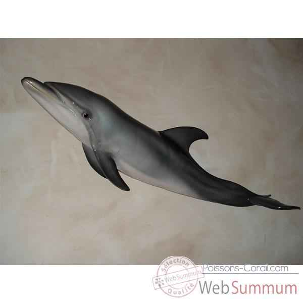 Troph e mammif re marin cap vert grand dauphin tr026 dans - Grand poisson de mer ...