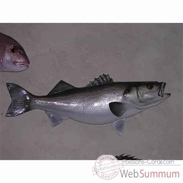 L 39 univers de la d coration aquatique poissons - Grand poisson de mer ...