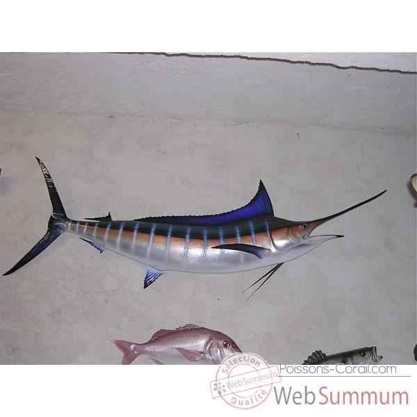 Achat de marlin sur poissons corail for Achat poisson